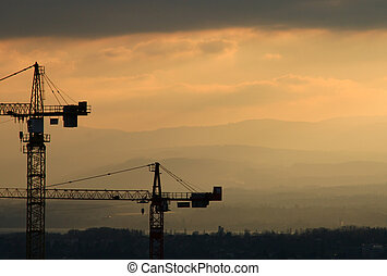 Cranes in the sunset