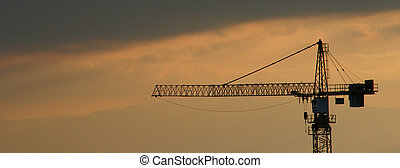 A crane in the evening light - Zoom on a crane during a...