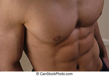 Pecs - Close up of a man\\\'s bulging pectoral muscles