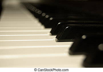 Piano Key Very Shallow depth of field One Black key is in...