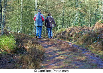 Forest Walk 2 - Couple taking a leisurly stroll in the woods...