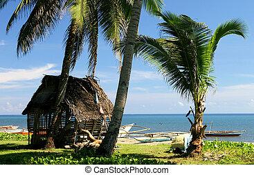 beach hut - a thatch hut sits on a tropical beach