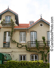 climbing vine - house with climbing vine in Sintra, Portugal