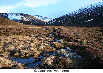 Stepping stones, Cairngorms, Scottish Highlands