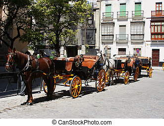 horse carriages 3 - horses and carriages for sightseeing in...