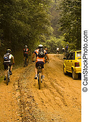 Biker - Mountain biker