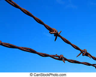 Barbed Wire Fence - A barbed wire fence against a flawless...