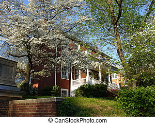Spring in Virginia - Charlottesville, VA