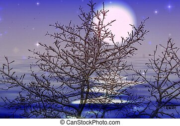 Moon snow - Beautiful night winter scene with moon light and...