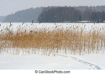 Inverno, cena