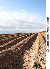 Ploughed Field Furrows