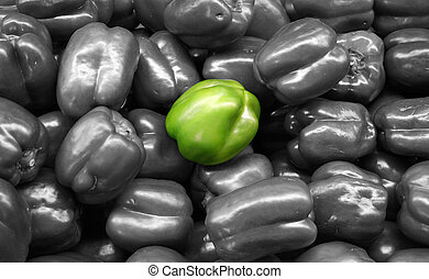 Vegetable - Green Bell Pepper Isolated - isolated green bell...