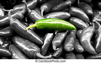 Vegetable - Jalapeno Pepper Isolated - isolated jalapeno...