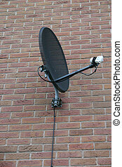 Satellite Dish - Black Satellite Dish with White LNB on...