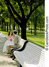 Married couple on the branch - Married couple sitting on the...