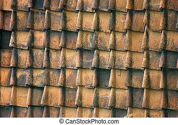 Roof panes - Dirty red tiles
