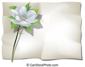 Magnolia on Sheet - Magnolia on old wrinkled sheet. Digital...