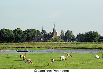 Dutch riverland