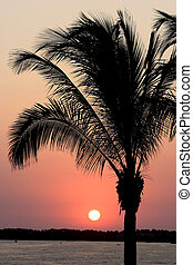 Mexican Sunset - A beautiful sunset near looking over the...