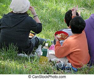 familia, picnic