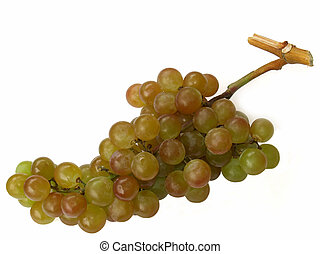 muscat grapes - a cluster of muscat grapes