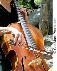 Here the Music? - Cello being played at a summer mountain...