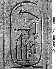 Egyptian cartouche - Pharaohs cartouche