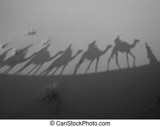 Shadow of a caravan - Shadows of camels and riders - Three...