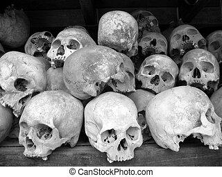 人類, 頭骨, B/W