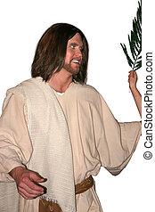 Jesus - Palm Sunday - a smiling Jesus