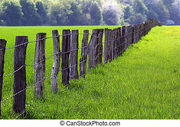 fence over farmland 03 - row of wooden posts from the...