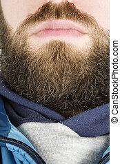 Beard Close Up - A young male with a full beard, detail...