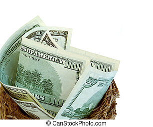 Financial Planning - Nest with money,conceptual for...