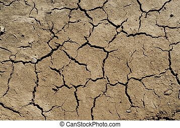 Dry soil background
