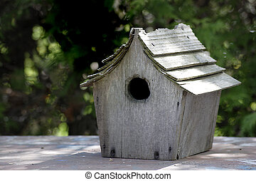Rustic Bird house - A well used rustic blue bird house with...