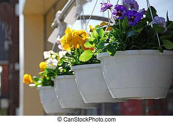 flor, cestas