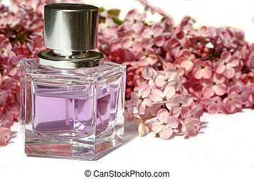 lilac perfume - lilac scented perfume, and lilacs