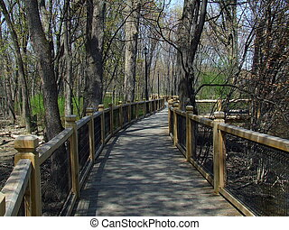 Nature bridge - NATURE BRIDGE IN FORESTin rosemere,lorraine...