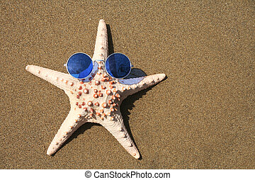 Groovy Starfish - Starfish wearing 1960s sunglasses