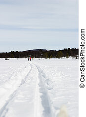 Cross Country Skiing - Cross country skiing trail and skis...