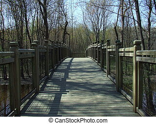 Nature bridge - Bridge on wildlife trail in...