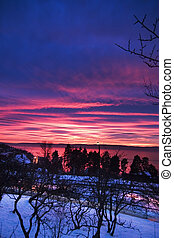 Purple Sunset - Sunset in Oslo Norway