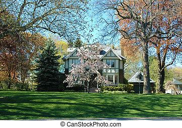 Tudor House 2 - Tudor house with bright green lawn