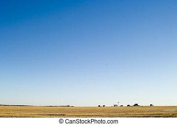 Prairie Yard