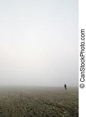 Prairie Fog Walk