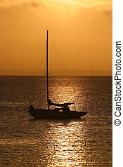 Sailboat on Golden Bay - Sailboat at anchor on bay in golden...