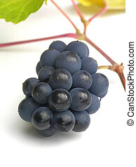 grapes on white table - Close-up of bunch of black grapes on...
