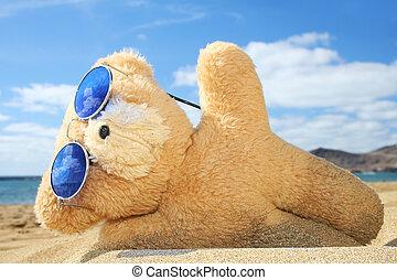 feriado, teddy