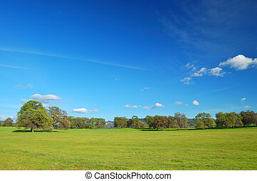 springtime landscape - springtime meadow and trees