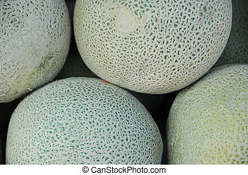 Melons - Whole melons at fruit market